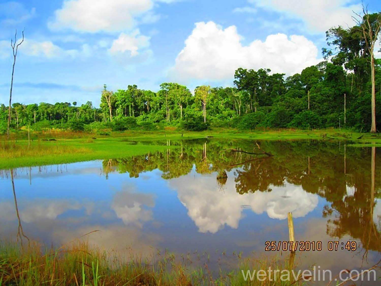 водная артерия Гайаны Потаро