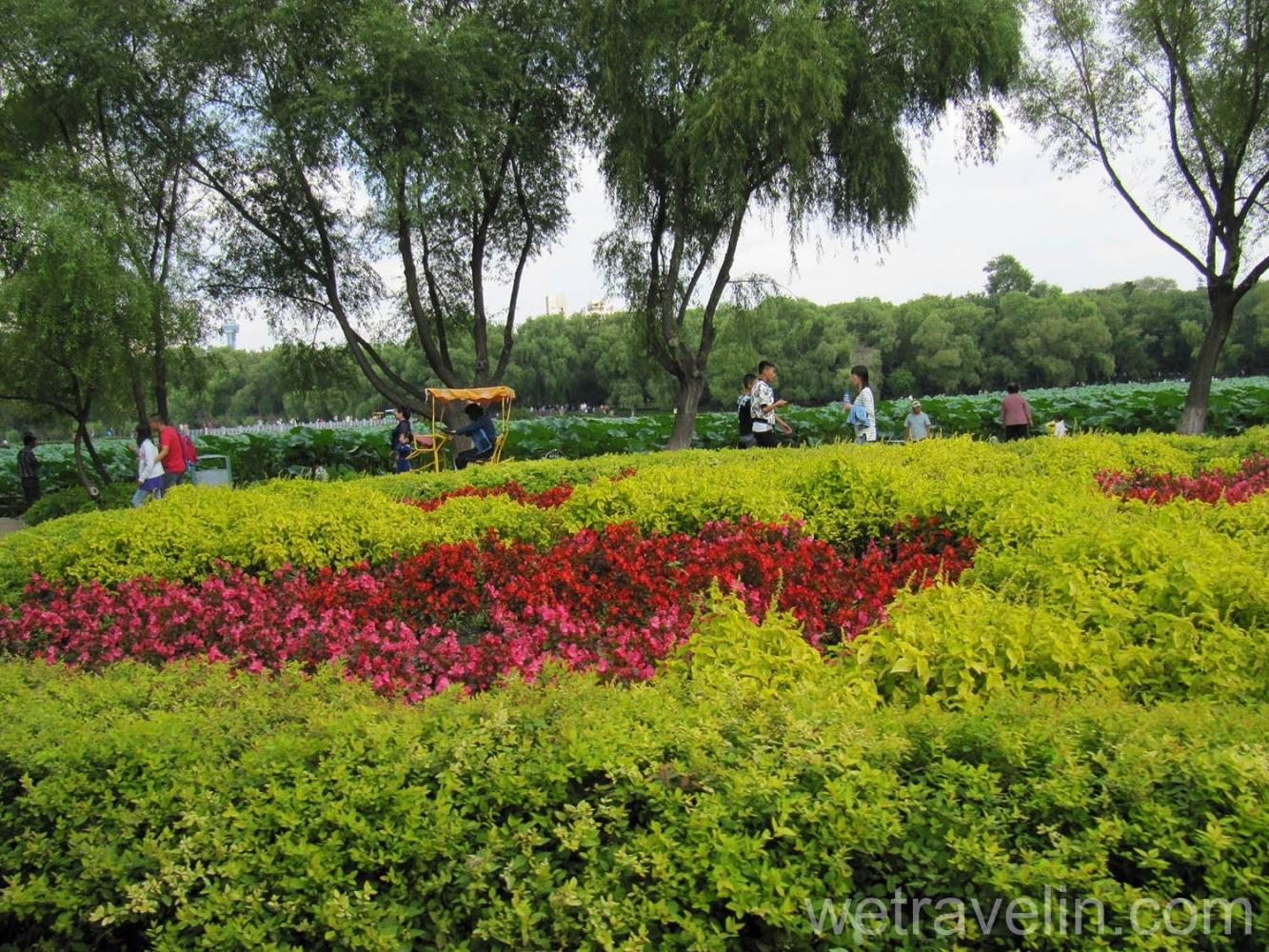 Парк в чанчуне