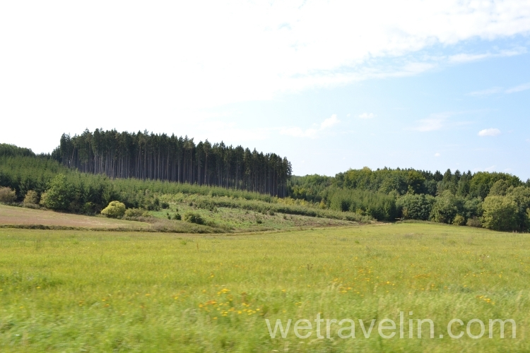 леса в Чехии