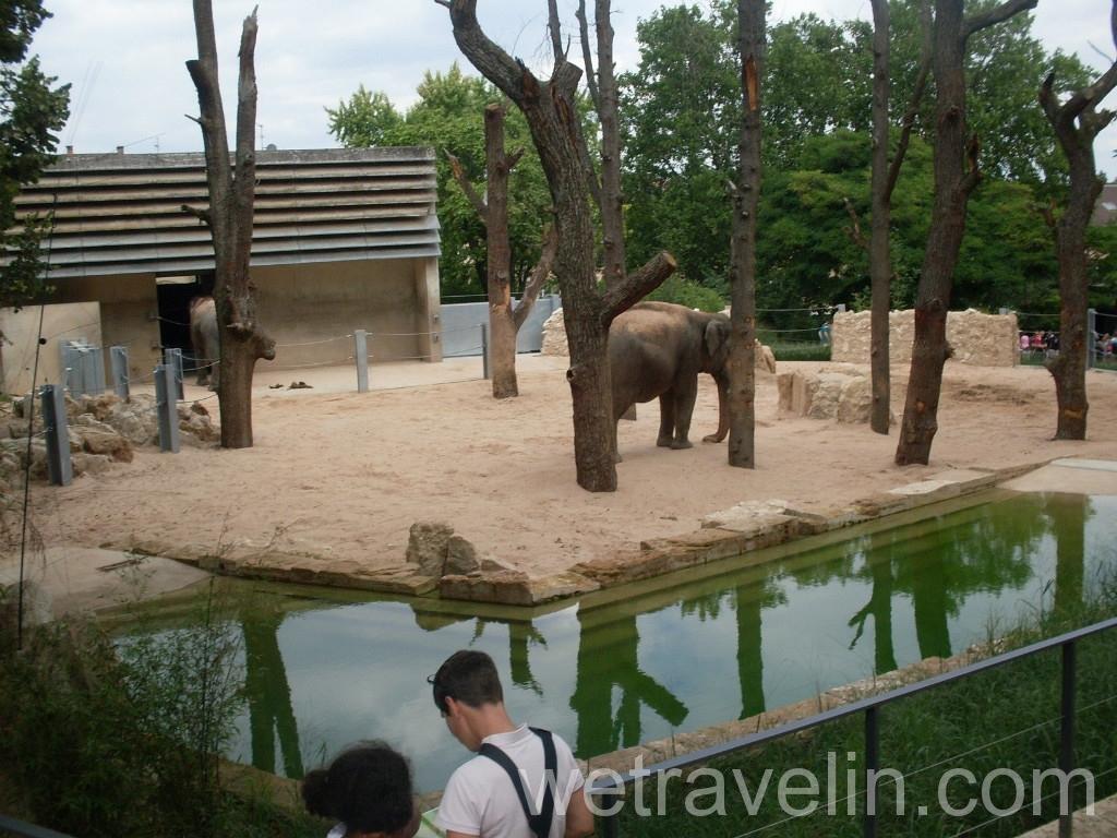 зоопарк Вильгельма