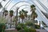 ботанический сад в городе наук